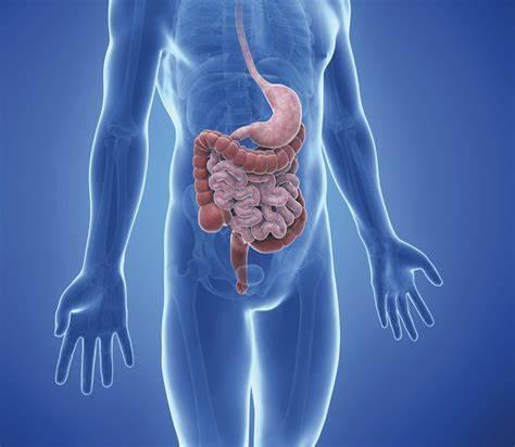 mikrobioma